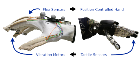 Low-cost Sensor Glove with Force Feedback for Learning from Demonstrations using Probabilistic Trajectory Representations