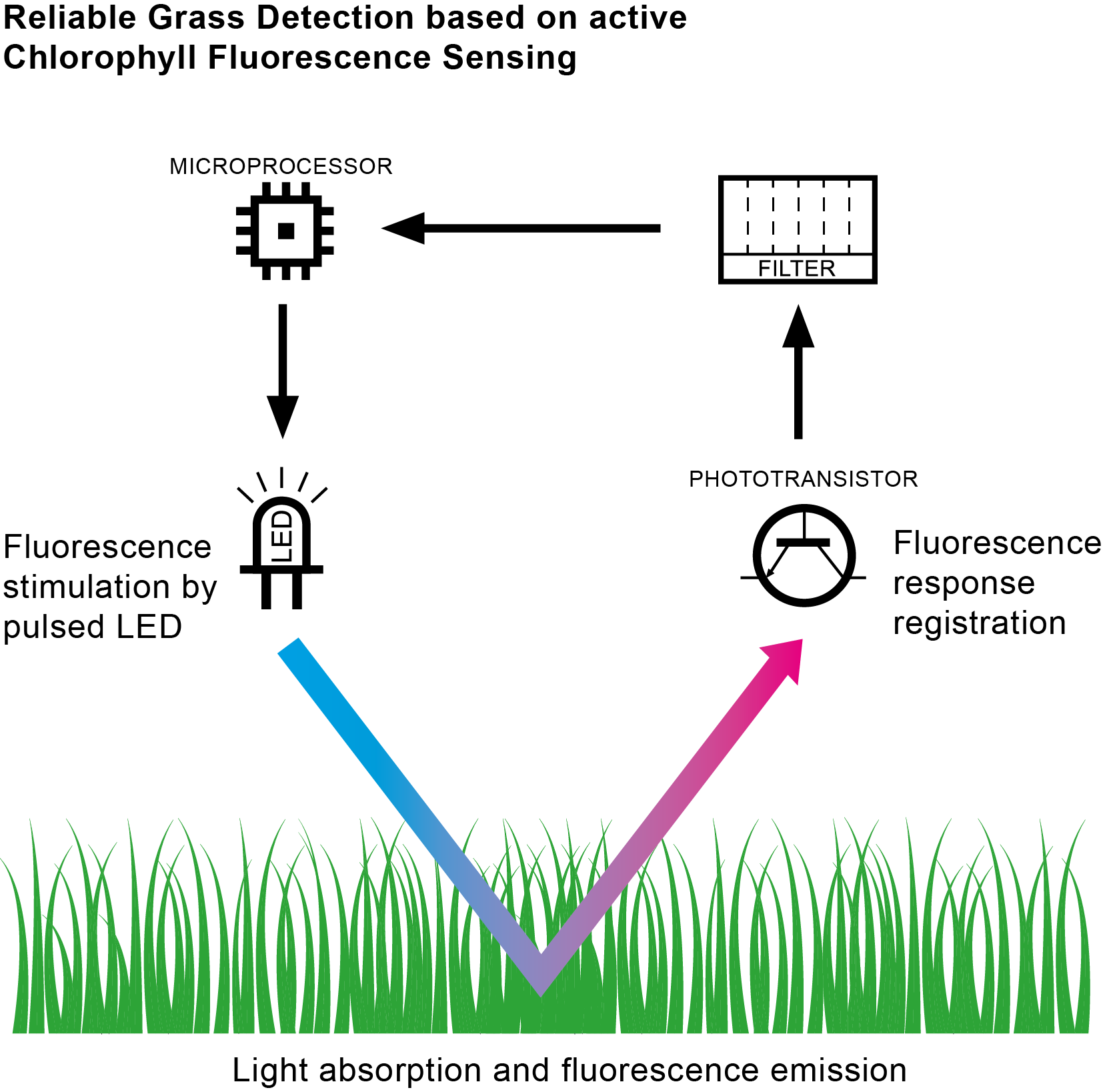 A novel Chlorophyll Fluorescence based approach for Mowing Area Classification
