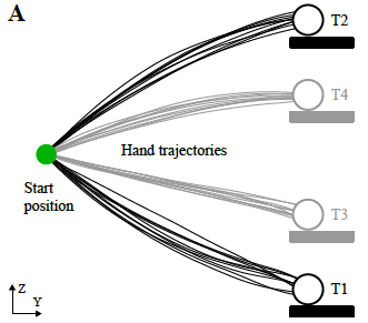 Predictive exoskeleton control for arm-motion augmentation based on probabilistic movement primitives combined with a flow controller
